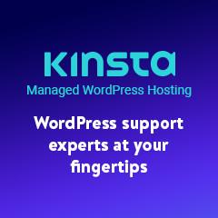 Kinsta Website Host