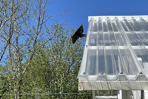 Solar Panels for Greenhouse Lights